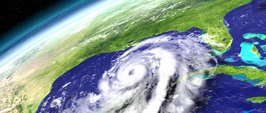 Hurricane Michael Alert